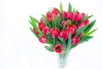 Tulpen von Annemieke Storm