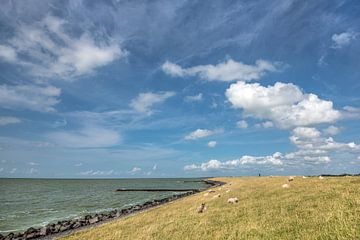 De IJsselmeerdijk vlak boven Stavoren in Friesland van Harrie Muis