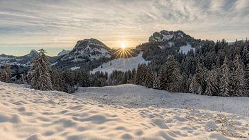 Zonsopgang Sattelegg, Kanton Schwyz van Pascal Sigrist - Landscape Photography