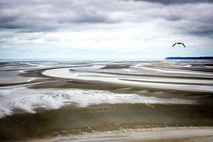 De eindeloze kust van