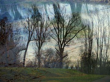 Hohe Bäume fangen viel Wind ein. von Anita Snik-Broeken