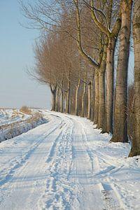 winter@zwevegem van Bart Colson