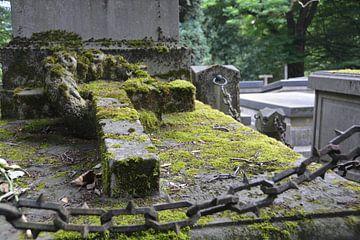 Begraafplaats Orthen van Verrassend Brabant
