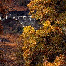 Glenfinnan viaduct van Ton Drijfhamer