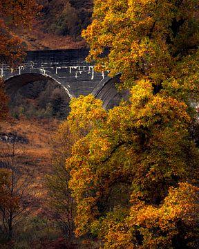 Glenfinnan-Viadukt von Ton Drijfhamer