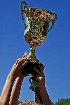 De trofee voor de winnaar! van Norbert Sülzner