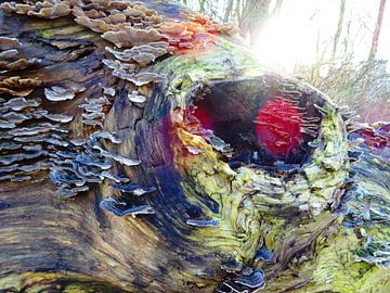 Tree Magic 106 - Elves Benches! van MoArt (Maurice Heuts)