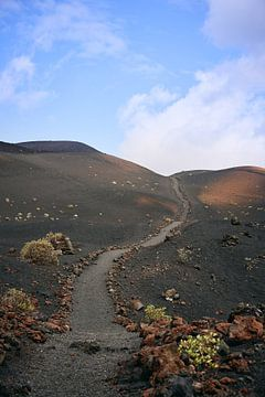 Paden op La Palma van MijuKasi