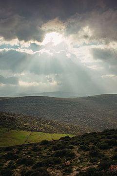 Uitzicht op Palestina van Lauri Miriam van Bodegraven