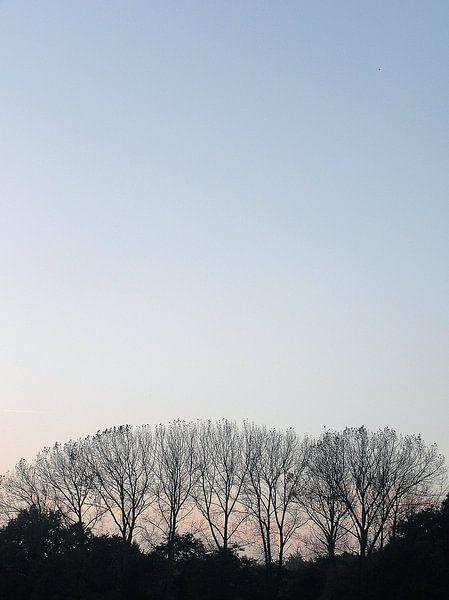 Herfst van Marc Otte