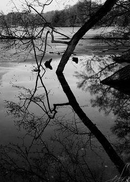 Water Reflectie van Iritxu Photography
