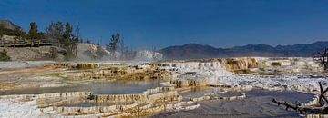 Yellowstone National Park, Mammoth Hot Springs van Gert Hilbink
