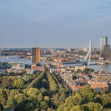 Skyline Rotterdam (vierkant) van John Ouwens