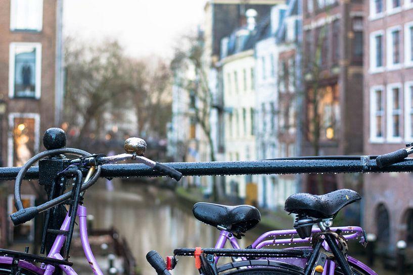 Fietsen in Utrecht van Danielle Bosschaart
