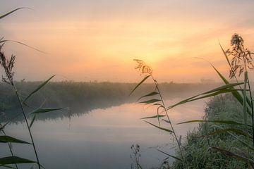 Zonsopkomst mistige ochtend. van Rick van de Kraats