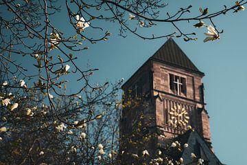 Schlosskirche Chemnitz im Frühling von Daniela Beyer