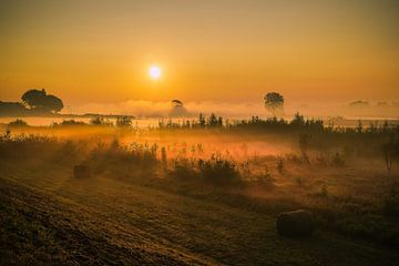 Als de zon wakker wordt