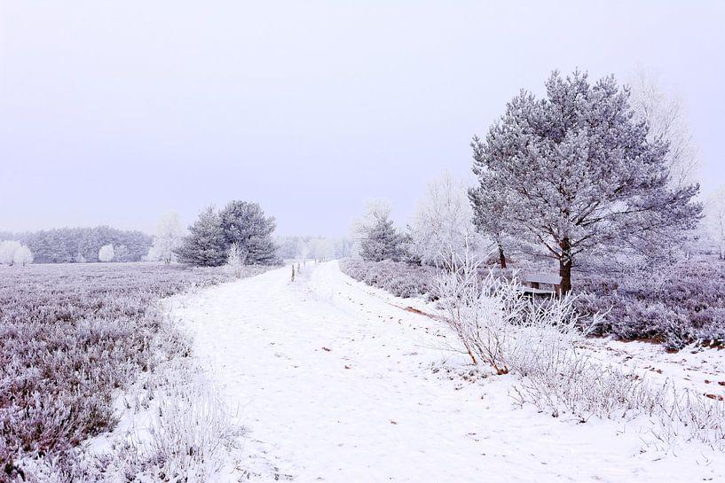 Moorland in Winter van Gisela Scheffbuch