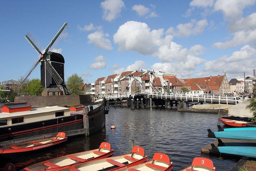Molen de Put bij het Galgewater in Leiden van Carel van der Lippe