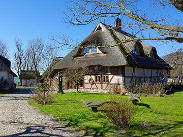 Altes Bauernhaus in Barnstorf von Gisela Scheffbuch