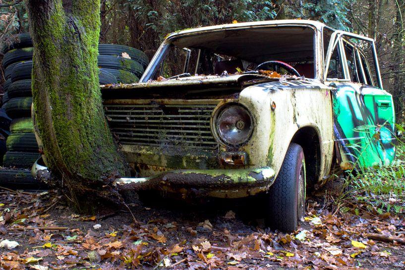 Lost in the woods von Werner V.M.