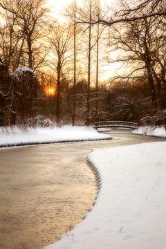 Nederland winter in park, Rijswijk van Ariadna de Raadt-Goldberg