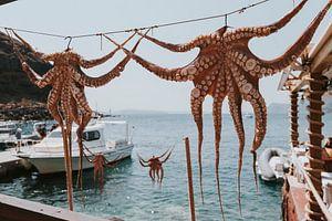 Trocknen von Tintenfisch in der Amoudi Bay, Santorini Griechenland von