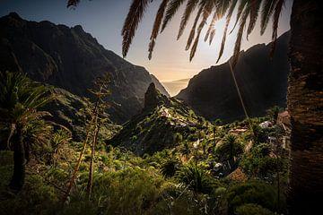 Het verborgen juweel van Tenerife van Joris Pannemans - Loris Photography