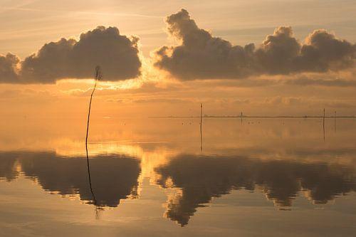 Windstille am Meer 2 von