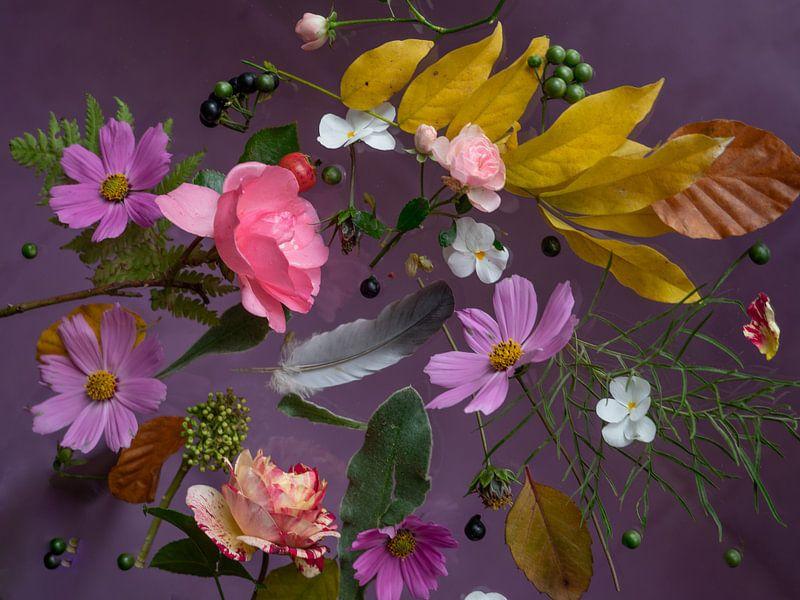 Blumenporträt (Ende Sommer) von Ineke VJ