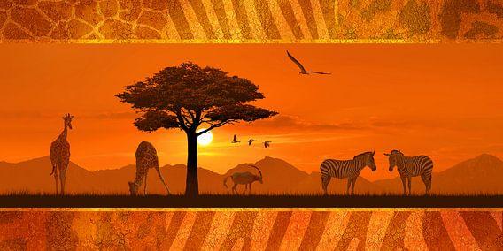 Romantische en decoratieve Afrika