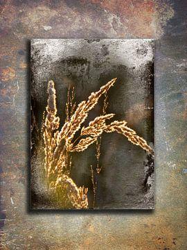 Paint of weed van Abra van Vossen
