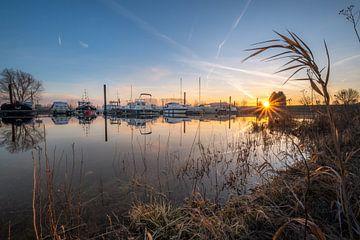 Zonsopkomst haven von Moetwil en van Dijk - Fotografie