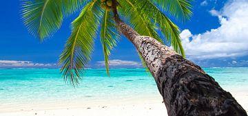 Amuri Beach, Aitutaki - Cook Islands van