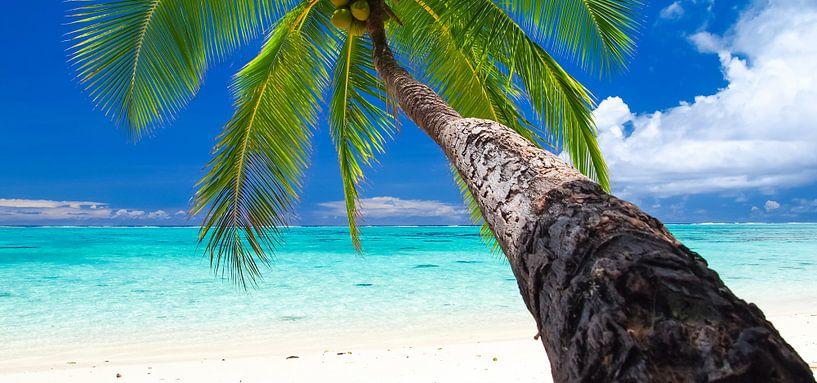 Amuri Beach, Aitutaki - Cook Islands van Van Oostrum Photography
