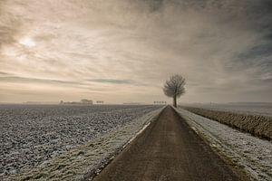 Winter stilte van