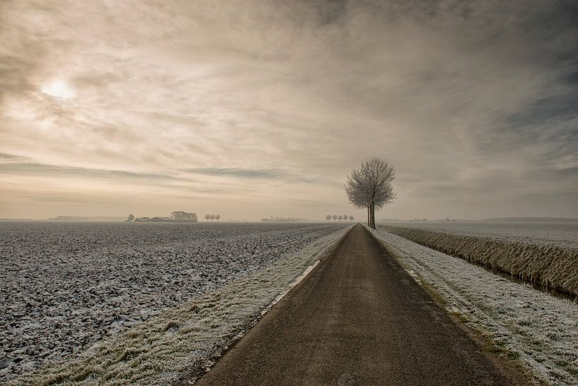 Winter stilte van Monique van Velzen