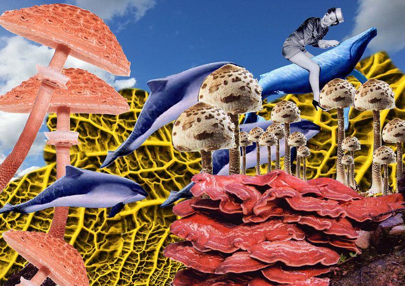 Mushroom Brigade van Terra- Creative