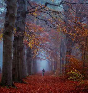 Misty morning van Robin Pics (verliefd op Utrecht)