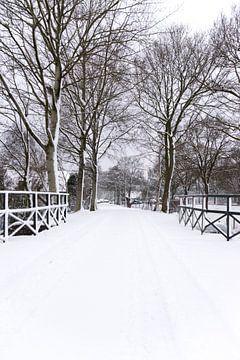 Een witte kerst? van As Janson