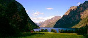 Groene fjord in Noorwegen van Willem van den Berge