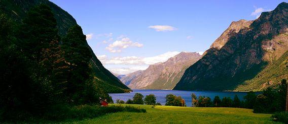 Groene fjord in Noorwegen
