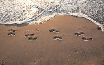 Fußstapfen im Sand.