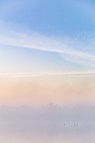 Ochtend Mist von Studio W&W