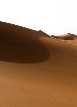 Sahara °7 van Jesse Barendregt