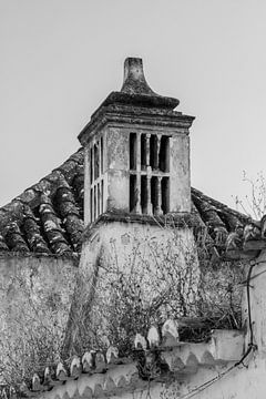 Toren Portugal van Irene Lommers