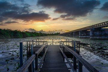 Nussbrunnenbrücke Den Bosch von Dennis Donders