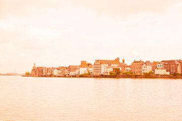 Dordrecht in oranje tinten van Ineke Duijzer