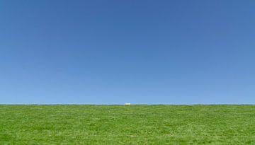 Het eenzame schaap. von Greet ten Have-Bloem