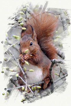 Eichhörnchen im Baum von Gonnie van Hove